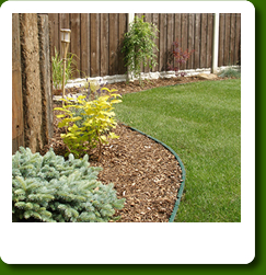 Dream Garden Services and maintenance garden maintenance in